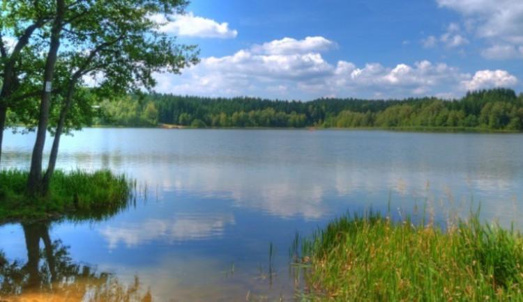 KOUPÁNÍ NA VYSOČINĚ: V rybnících Medlov a Sykovec v posledním týdnu mírně ubylo sinic