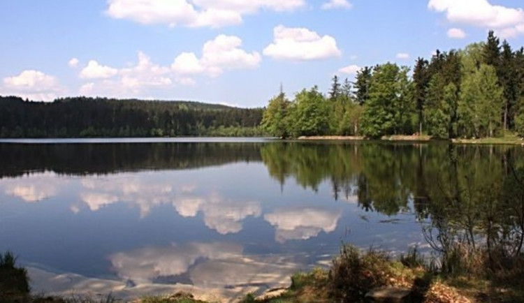 KOUPÁNÍ NA VYSOČINĚ: Čistota vody v některých rybnících Vysočiny se zlepšila