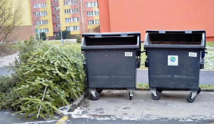 V Jihlavě probíhá svoz vyhozených vánočních stromečků. SMJ je využijí do nového kompostu