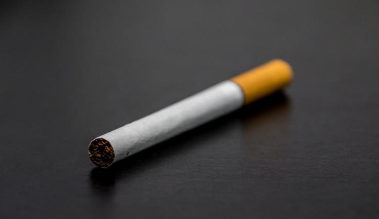 Senát schválil takzvaný protikuřácký zákon beze změn