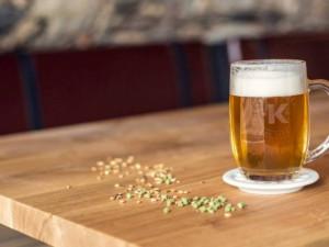Vysočina bude mít další pivovar. V Kamenici nad Lipou se slavnostně otevře 28. října