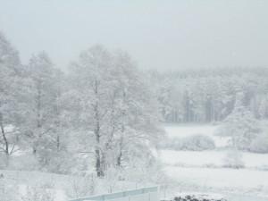 """FOTO: Sníh dorazil na Vysočinu. """"První"""" zimní den pohledem čtenářů Jihlavské Drbny"""