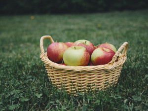 Makro ukončilo spolupráci s farmářem, který dodával jablka s pesticidy