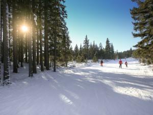 LYŽOVÁNÍ NA VYSOČINĚ: Ubývá sníh pro běžkaře. Na sjezdovkách jsou pořád dobré podmínky