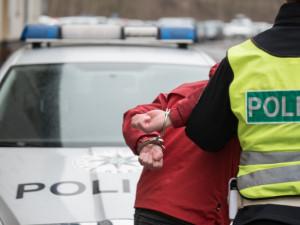 Policie obvinila čtyřiatřicetiletého muže z distribuce drog. Nabízel marihuanu a pervitin