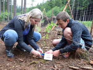 Pod Křemešníkem vyroste nový bukový les. První stromky zasázeli školáci z celé Vysočiny