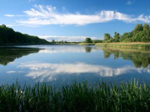 Sedlec na Třebíčsku plánuje rybníky za 14 milionů korun. Obec je ve fázi hledání dodavatele