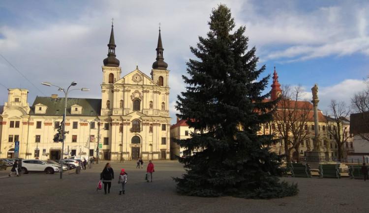 FOTO, VIDEO: Na jihlavském Masarykově náměstí už stojí vánoční strom. Rozzáří se 1. prosince