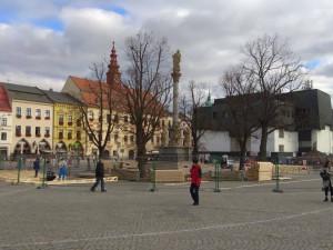Vánoce v Jihlavě: Lípy kolem Mariánského sloupu letos bez osvětlení. Stromy chátrají, vysvětluje radnice