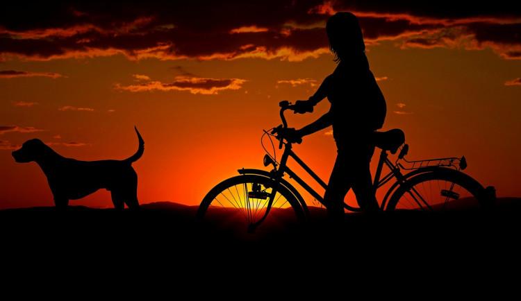 Cyklisté v kraji v roce 2019 nejčastěji vyjížděli v srpnu. Stezky byly nejvíc plné v neděli