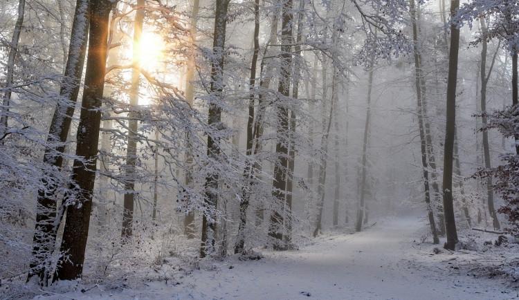 POČASÍ NA PÁTEK: Pozor na mrznoucí mlhy. Při slunečním svitu budou až tři stupně