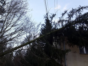 ORKÁN SABINE: E.ON odvolal na Vysočině kalamitní stav, v opravách pokračuje