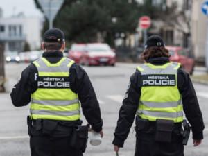 Strážníci na Vysočině během loňského roku rozdali o pětinu méně pokut