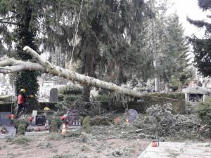 Domácnosti na Vysočině se kvůli větru ocitly bez proudu. Problémy jsou také v dopravě