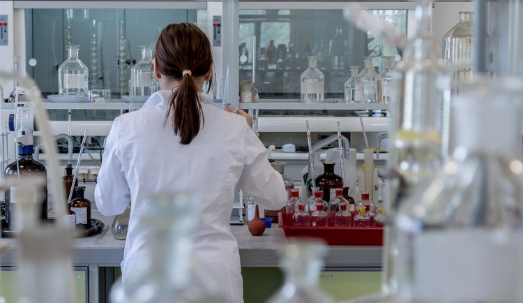 Laboratoř veterinářů v Jihlavě dnes začne dělat testy na koronavirus