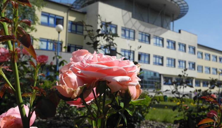 Nemocnice v Novém Městě zprovoznila JIP. Oddělení zavřelo kvůli koronaviru