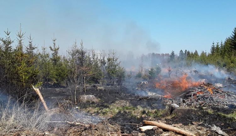 Sedm jednotek hasičů zasahuje u požáru lesa. Byl vyhlášen druhý stupeň poplachu