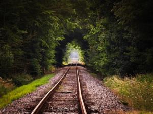 Na Havlíčkobrodsku se srazil vlak s osobním autem. Vše se naštěstí obešlo bez zranění