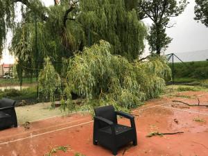 To byla pořádná šichta. Na Vysočině odklízeli hasiči po bouřkách stromy na desítkách míst