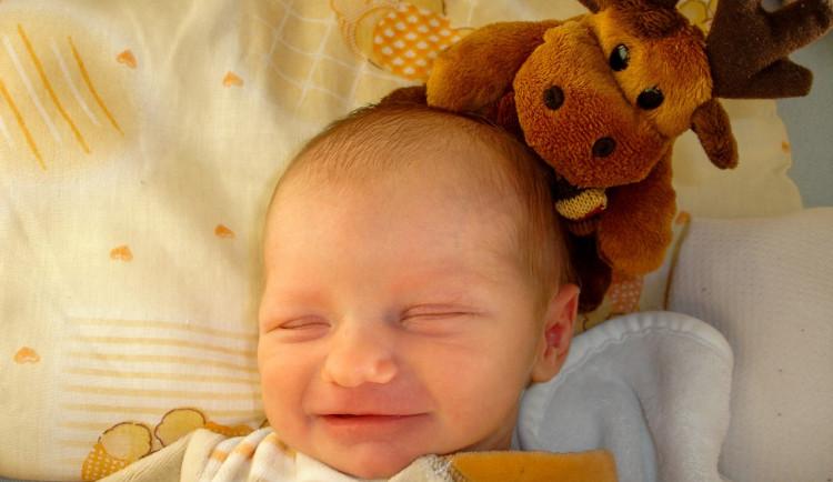 Tatínci v jihlavské nemocnici mohou na návštěvu na šestinedělí. Za jakých podmínek?
