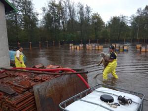 FOTO: Vytrvalý déšť na Vysočině zvedá hladiny řek. S vodou bojují obyvatelé i hasiči