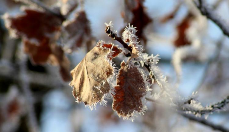 Sněhové vánice v nejbližších týdnech nečekejte, mrznout bude především v noci