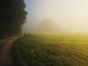 POČASÍ NA STŘEDU: Ráno pozor na mrznoucí mlhu. Někde může i slabě sněžit