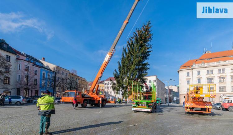FOTO, VIDEO: Svůj vánoční stromek má už i Jihlava. Letos bude nazdobena i radnice