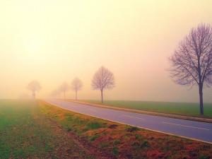SJÍZDNOST: Buďte opatrní. I dnes cestování po Vysočině komplikuje mrznoucí mlha