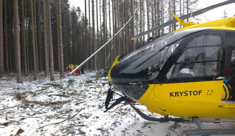 Na muže v lese spadl strom, těžce se zranil. Přiletět musel záchranářský vrtulník