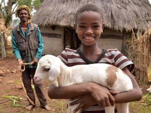 Lidé na Vysočině kupují kozy ve velkém. Skutečné dárky pomáhají u nás i v zahraničí