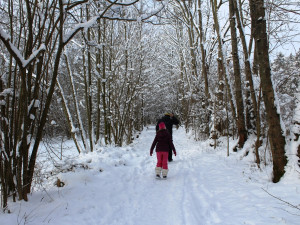 Jak bude v únoru? Zřejmě se ochladí a měli bychom se dočkat nového sněhu