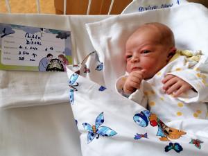 Pelhřimovská porodnice pomohla na svět letošnímu stému miminku. Porod Viktora byl hodně rychlý