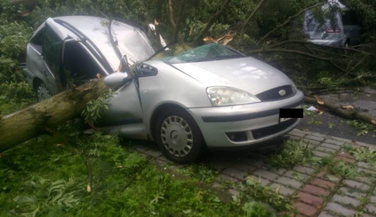Na Vysočině v bouřkách padaly stromy, hasiči měli skoro 300 výjezdů