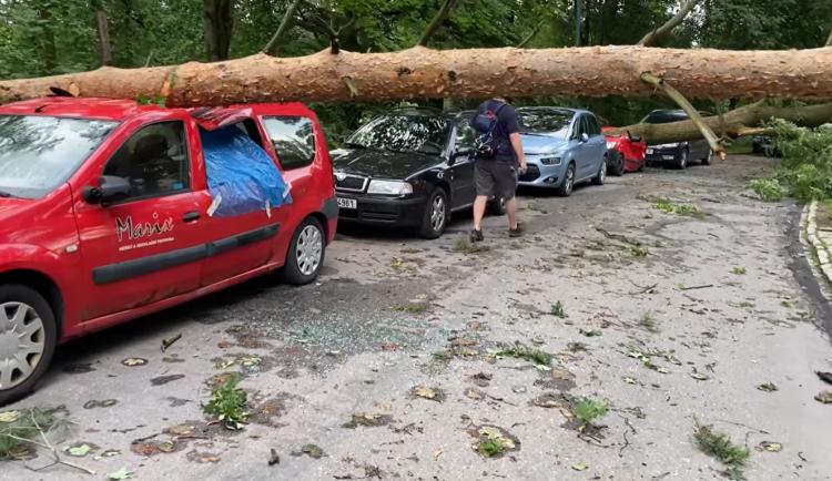 Ráno už nevyjeli. Popadané stromy a větve poničily na dvacet aut v ulici Na Kopci