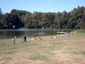 Na Vysočině hygienici zakázali koupání v rybníku Kachlička. Ředkovec a Sedlice jsou nevhodné