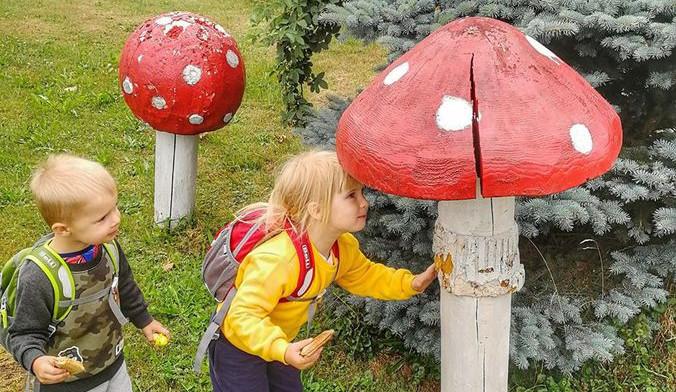 Tip na výlet. Malé i velké houby v obci Kněževes, děti potěší hřiště i stezka s úkoly