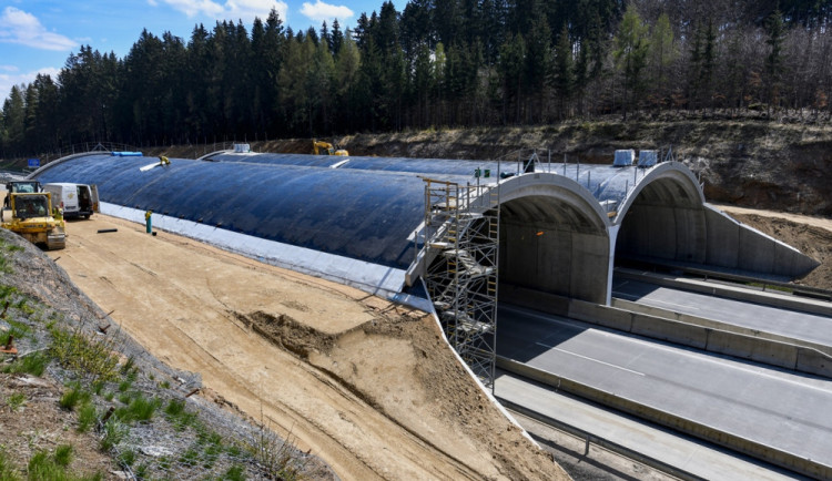 Na prvním dokončeném ekoduktu u Humpolce zachytila fotopast daňka i zajíce