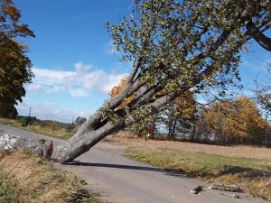 Vysočinu dnes potrápil silný vítr. Nejezdily vlaky, některé domácnosti jsou stále bez proudu