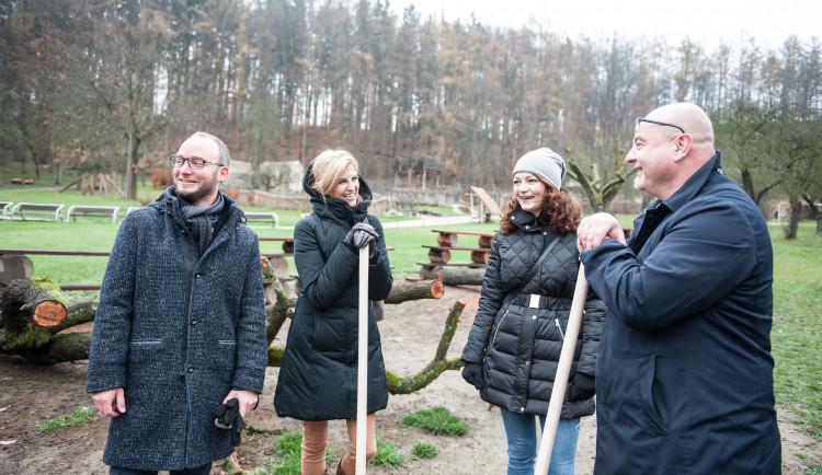 Výsadba stromů v jihlavské zoo